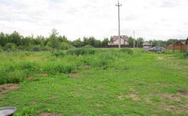 Участок в деревне Пашуково